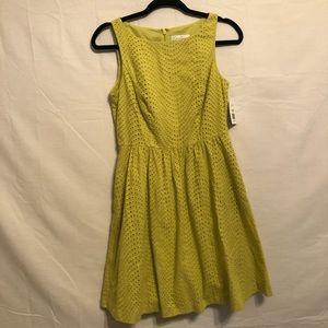 Jessica Simpson Eyelet Midi Dress  NWT